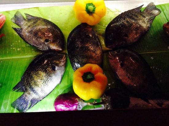Taj Malabar Resort & Spa Cochin: The Rice Boat - great selection of fresh seafood