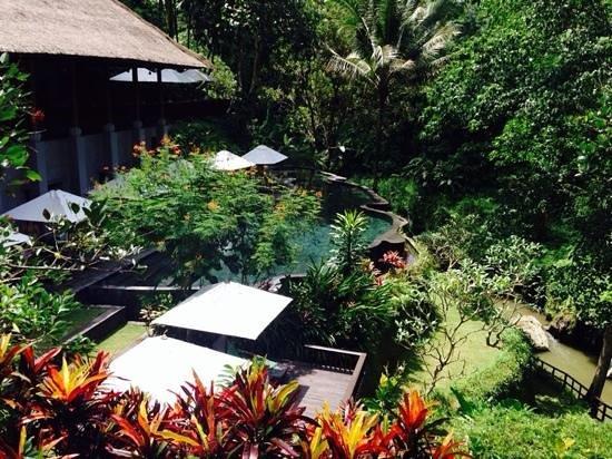 Maya Ubud Resort & Spa: the Spa and spa pool