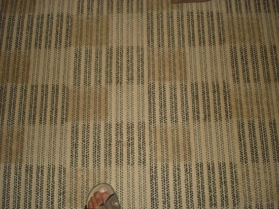 Extended Stay America - Raleigh - Cary - Regency Parkway North : Dirt stains on carpet