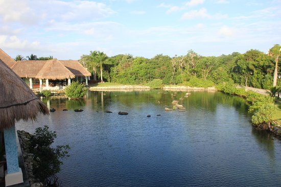Grand Palladium White Sand Resort & Spa : территория отеля вид с мостика