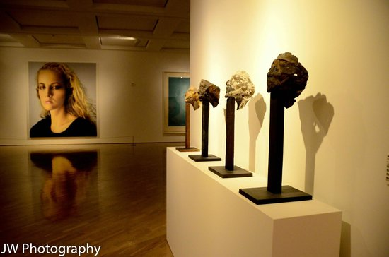 The Hess Collection Winery & Art Museum: Museum display