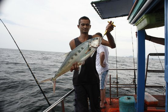 Hua Hin Game Fishing - Private Day Fishing Trips
