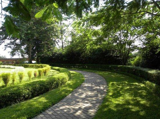 Sinclairs Retreat Dooars, Chalsa: Green Pathway