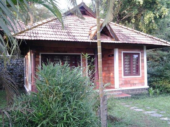 Misty Woods: vernacular cottage