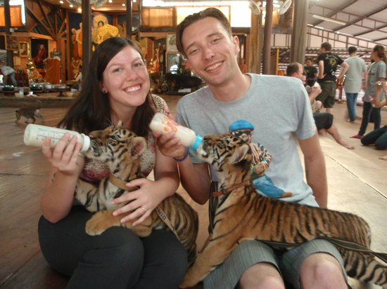 Tiger Temple ( Wat Pa luang Ta Bua) : bottle feeding tiger cubs is a big highlight!