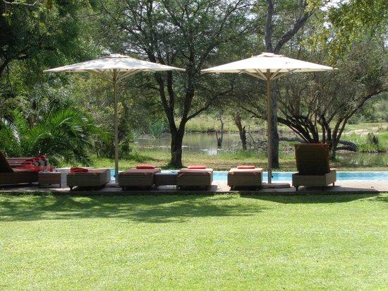 Tanda Tula Safari Camp: Swimming pook