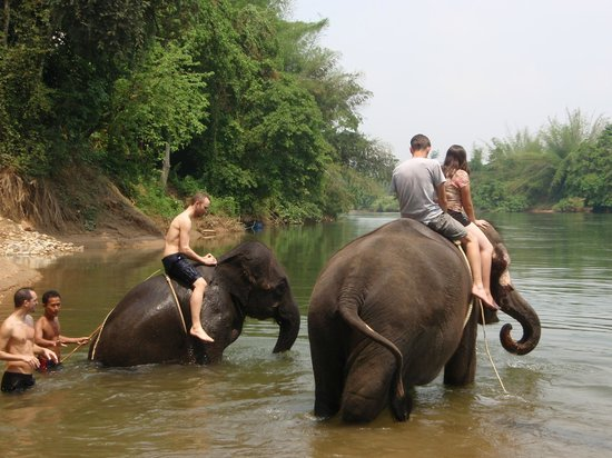 Tiger Temple ( Wat Pa luang Ta Bua) : out to get wet