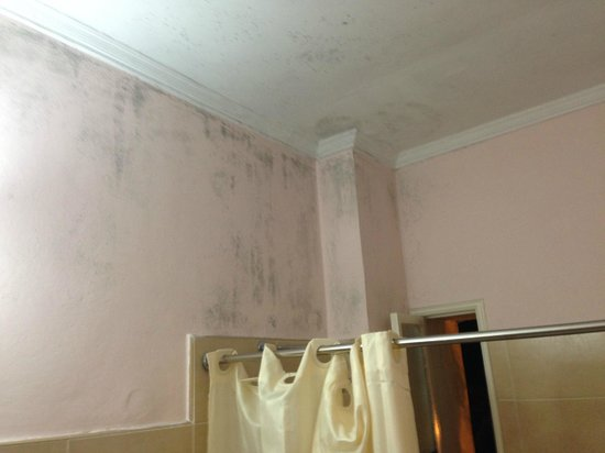 Hotel Inglaterra: mould on ceiling and walls