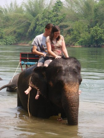 Tiger Temple ( Wat Pa luang Ta Bua) : going for a swim