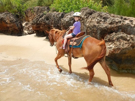 CJM Country Stables : My daughter riding along the ocean