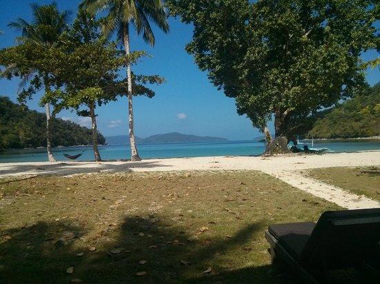 Secret Paradise Resort & Turtle Sanctuary : view from our front porch
