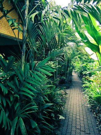 Smile House Resort: Awesome green foliage