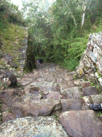 Camino Inca: dur les dernières marches!