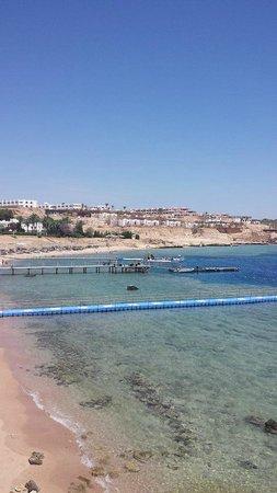Domina Coral Bay Prestige Hotel: Beach
