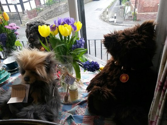 Ye Olde Steppes: Lovely bears in the window for sale