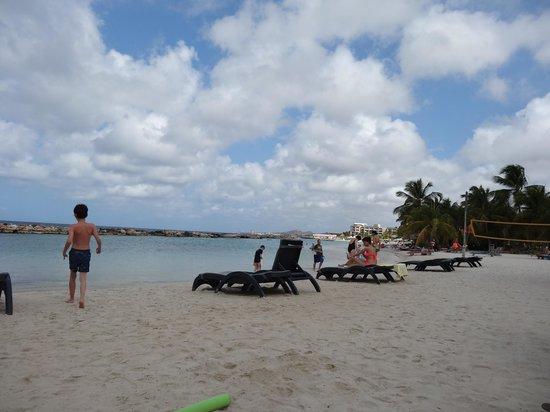 Lions Dive & Beach Resort Curacao: hotel beach
