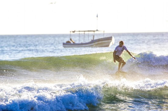 One Love Surf School & Shop: some perfect small waves