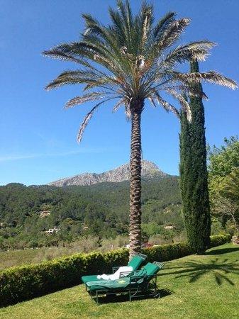 Gran Hotel Son Net: Garten
