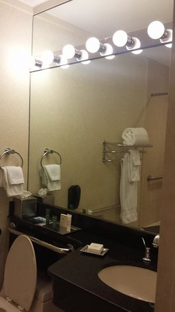 Millennium Hilton New York Downtown: Bathroom