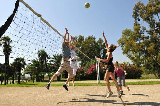 Le Domaine du Mas Blanc: Terrain de volley