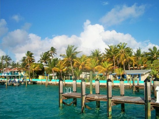 Bimini Big Game Club Resort & Marina: Marina