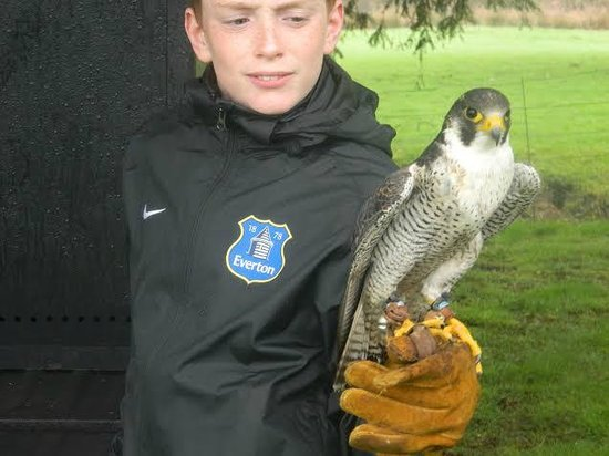 Swinton Park: Joshua with falcon