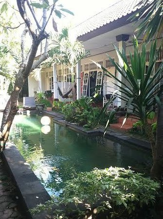 Little Pond Homestay: Hotel Area and Pool