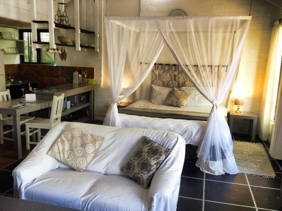 Hornbill House Self Catering Accommodation : The room
