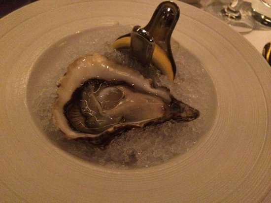 Gold by Harlan Goldstein : Oysters