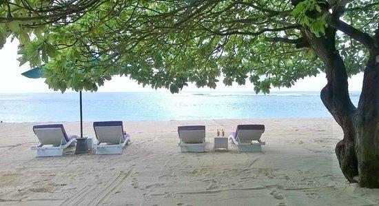 Beach Club Picture Of Amarterra Villas Bali Nusa Dua Mgallery Nusa Dua Tripadvisor