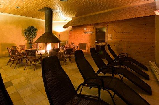 Westfalen Therme am Vital-Hotel: Kaminzimmer Saunahauptebene