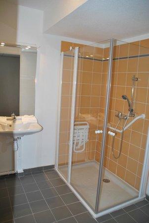 Le Virginia : Salle de bains (douche - logement PMR)
