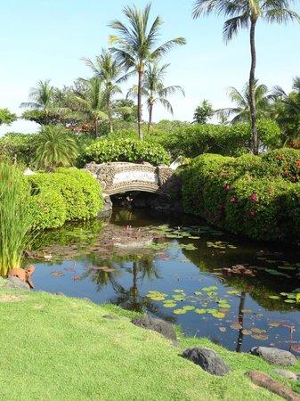 Grand Hyatt Bali: tuin