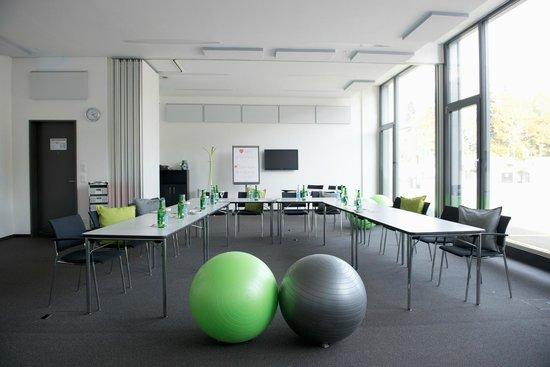 Holiday Inn Schindellegi - Zurichsee: Seminarräumlichkeiten