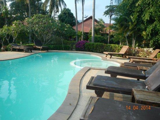 Morning Star Resort : Pool
