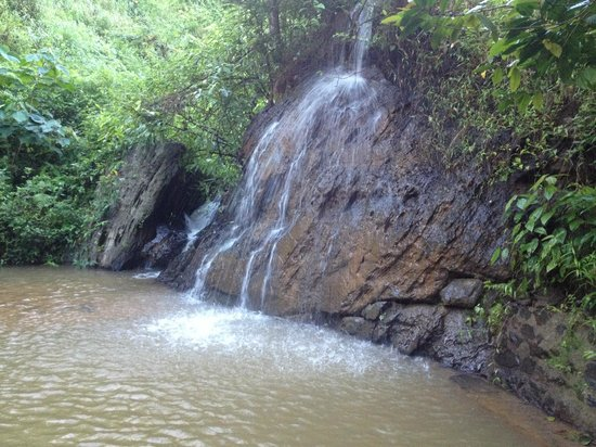 Sunrise Valley Resort : Small waterfall in the hotel property