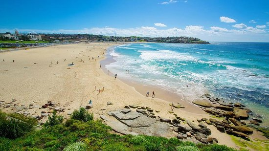 Best Sydney Tours