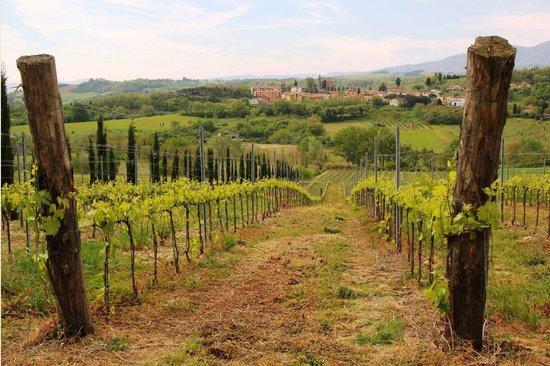 Borgo di Casagrande: Vista frontal desde los viñedos