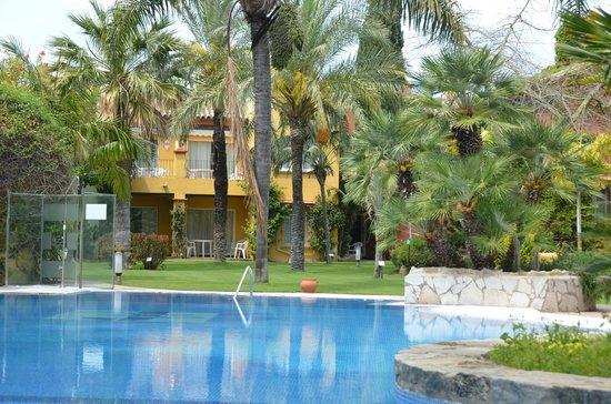Los Jandalos Vistahermosa: Pool garden