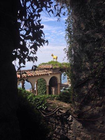 Chateau de la Chevre d'Or: Chèvre d'or