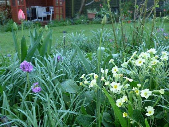 Langdale View Guest House: Beautiful Garden