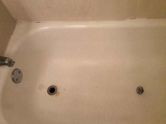 Hollywood Beach Resort Cruise Port Hotel : Gonna take a bath??