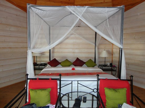 Kuredu Island Resort & Spa: This was our beautiful bed when we arrived