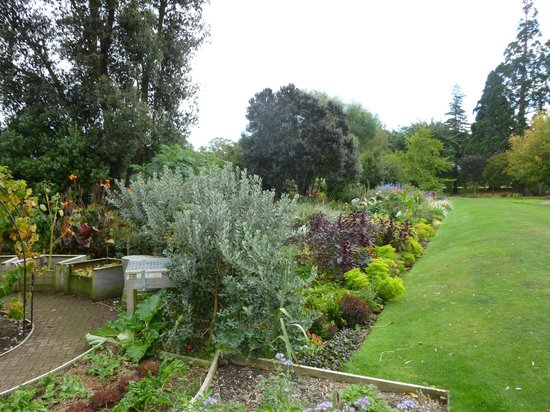 Pollard Park: vegetable garden