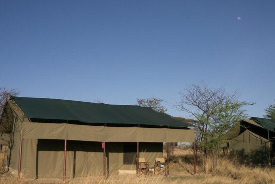 Ang'ata Camp Serengeti : our tent