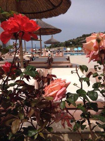 Hotel Samara : Prachtig uitzicht
