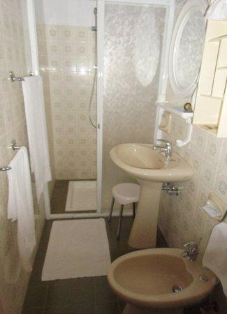 Hotel Vittoria Orlandini : Duschbad