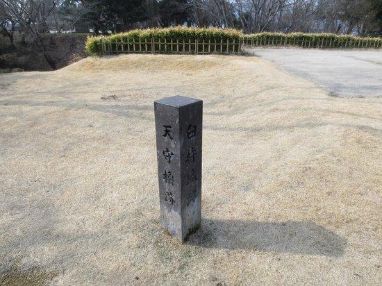 Usuki Castle Ruin: 天守櫓跡