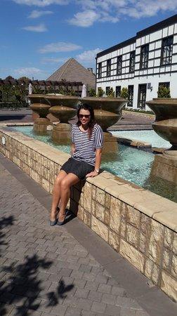 Protea Hotel by Marriott Hilton: Pool area
