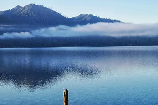 Lochaerie Resort : Morning view of Lake Quinault